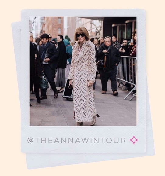 @theannawintour style icon over 50