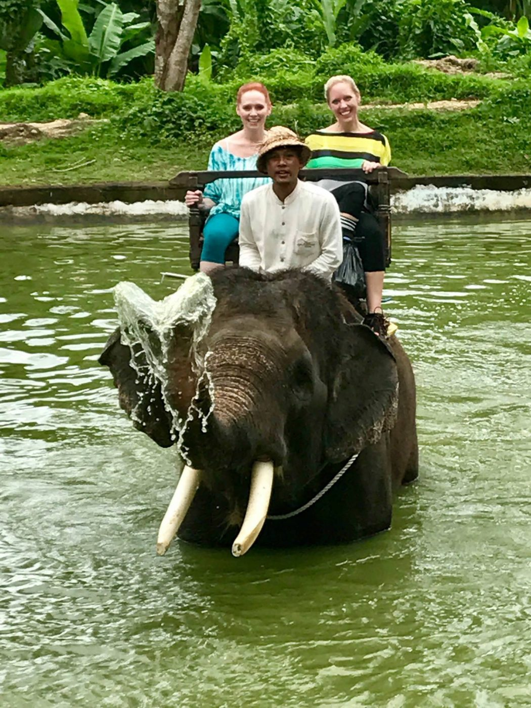 Women riding an elephant in beautiful Bali. On the Bliss Sightseers Package indulge your sightseeing bliss with our personal driver to take you around and show you the highlights of Bali