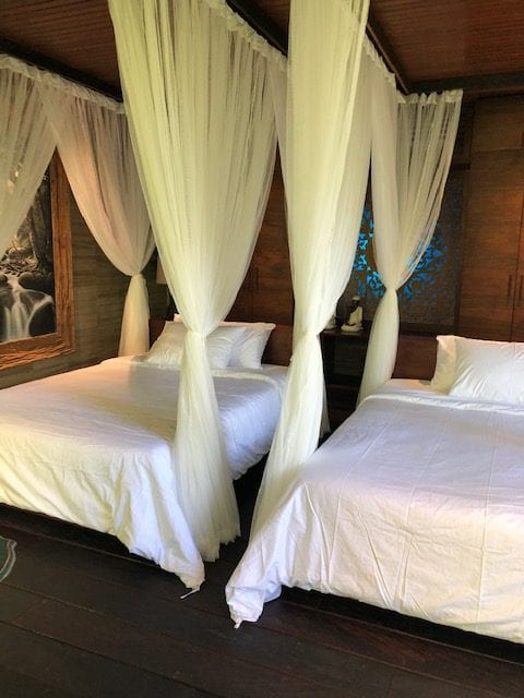 luxury bedroom with 2 beds, each with white bedding and draped by net curtains